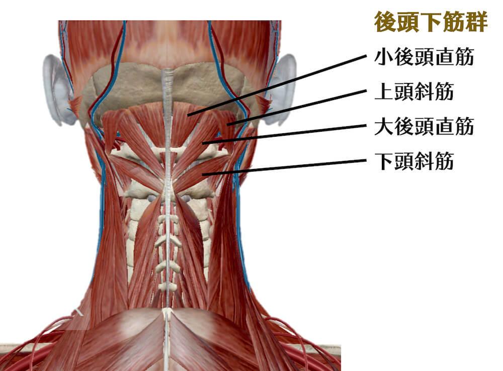 症状について_しびれ - マーノ鍼灸院|国立市の鍼灸・はり治療・整骨院|立川、国分寺も